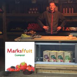 marksfruit_tworiversmarathon